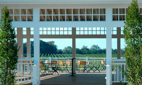 4 Wine Country Tours in Long Island That Will Awaken Your Senses